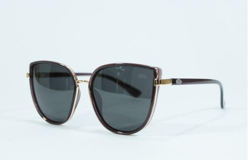 Óculos Pau a Pique Polarizado Marrom e Dourado Feminino 4